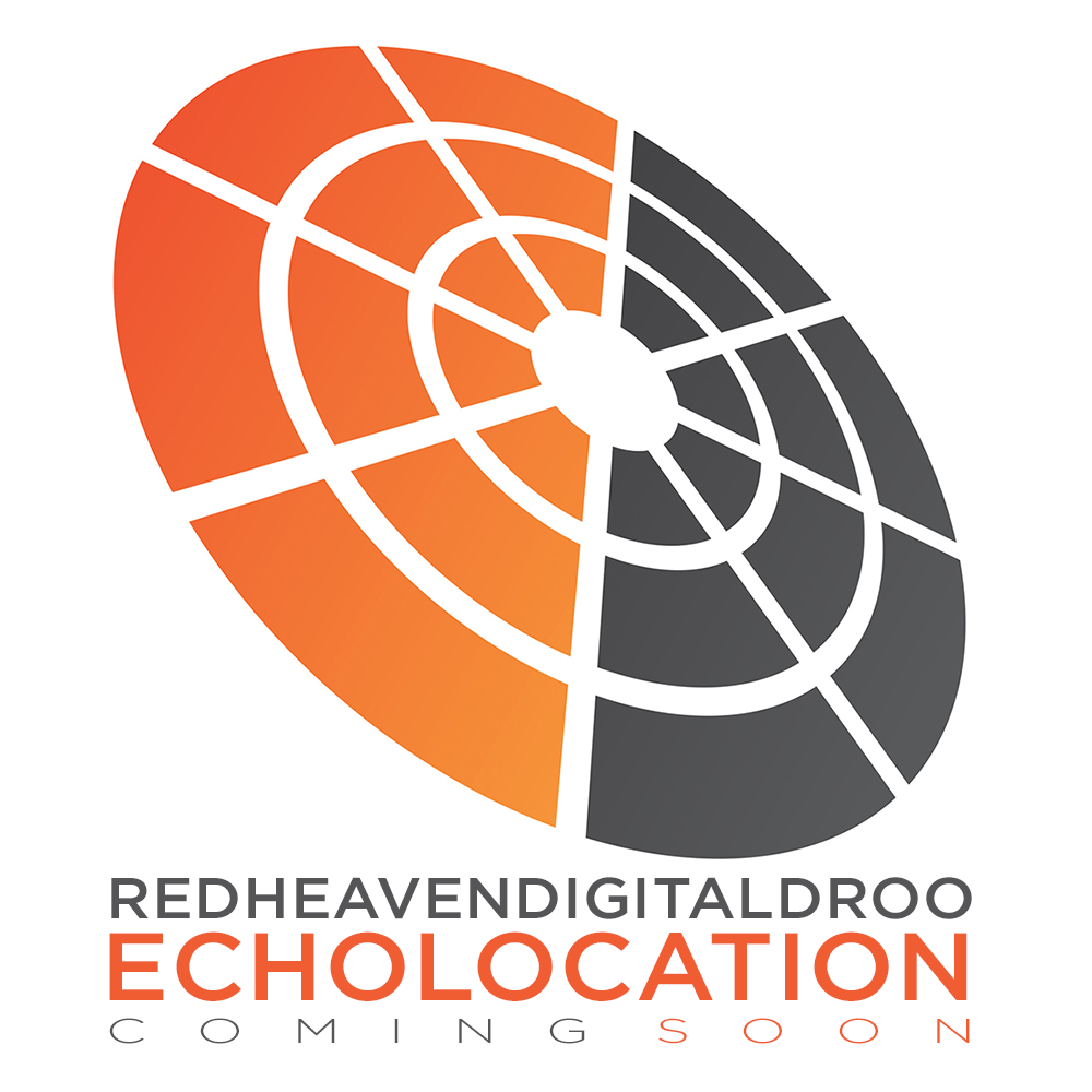 Echolocation Teaser
